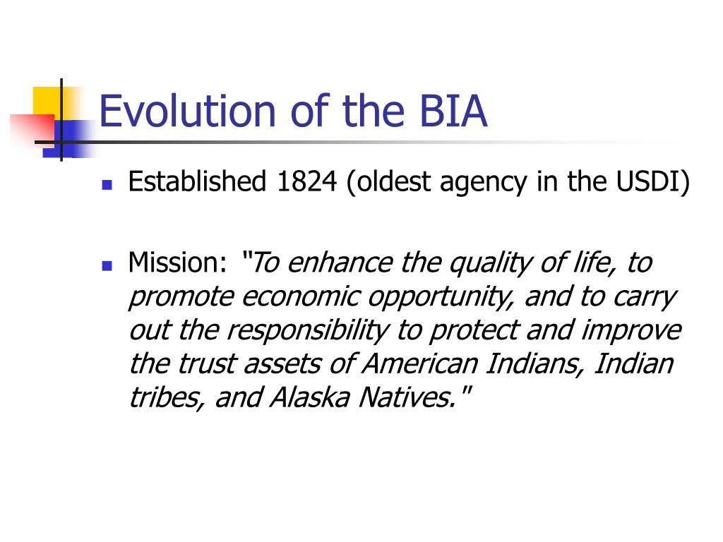 Evolution of the BIA