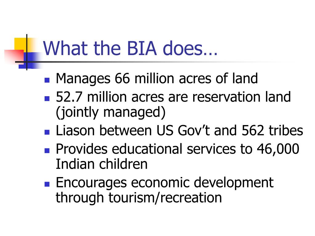 What the BIA does…