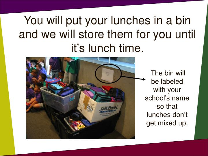 You will put your lunches in a bin and we will store them for you until it's lunch time.