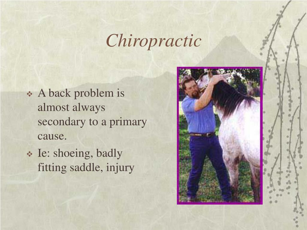 A back problem is almost always secondary to a primary cause.