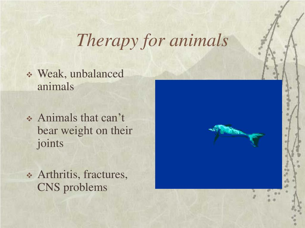 Therapy for animals