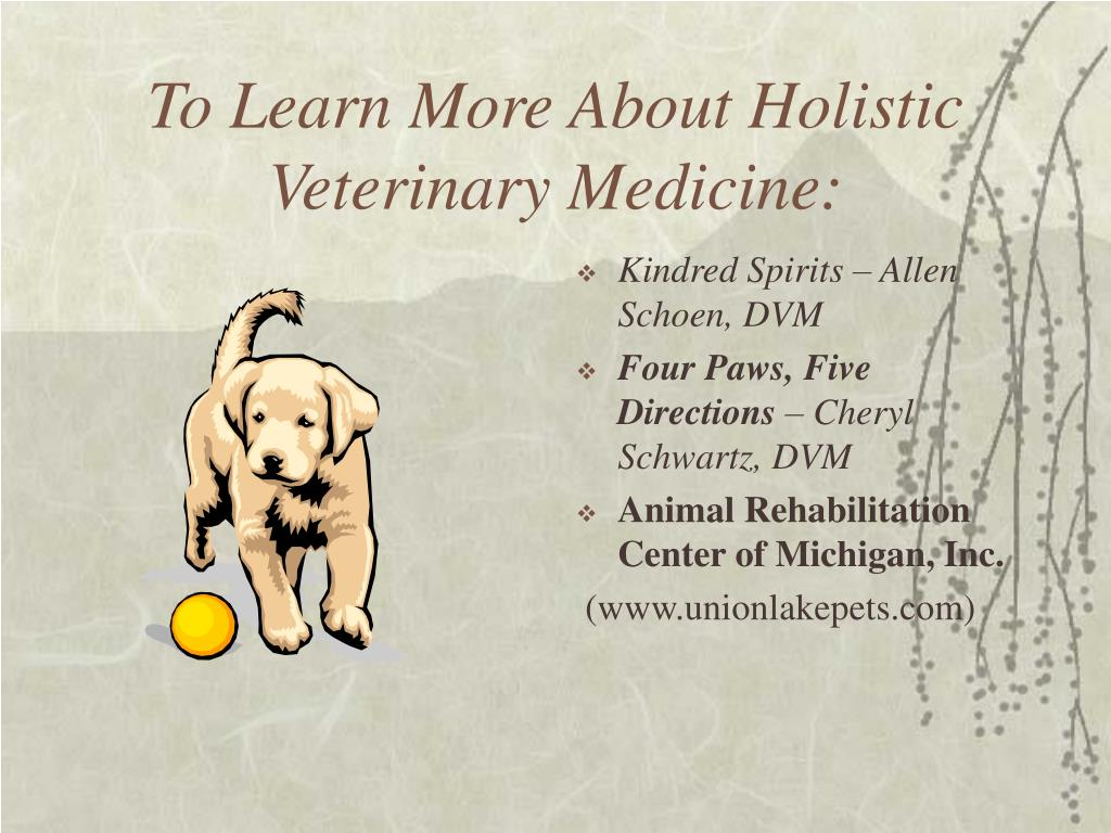 To Learn More About Holistic Veterinary Medicine: