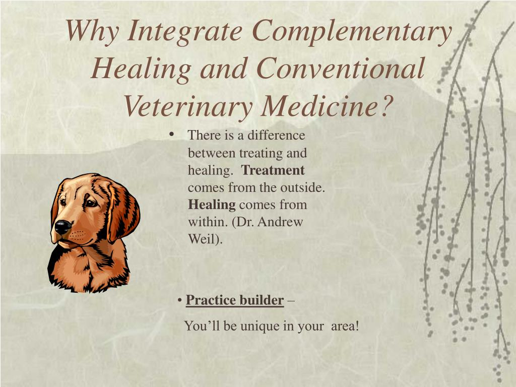 Why Integrate Complementary Healing and Conventional Veterinary Medicine?
