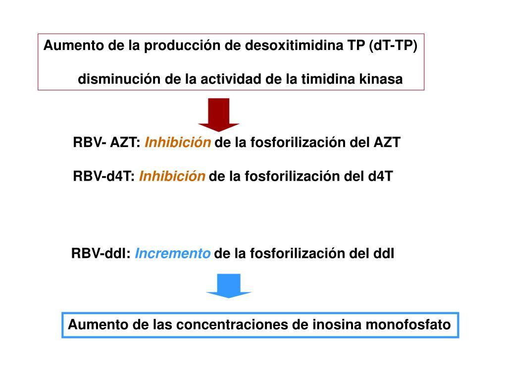 Aumento de la producción de desoxitimidina TP (dT-TP)