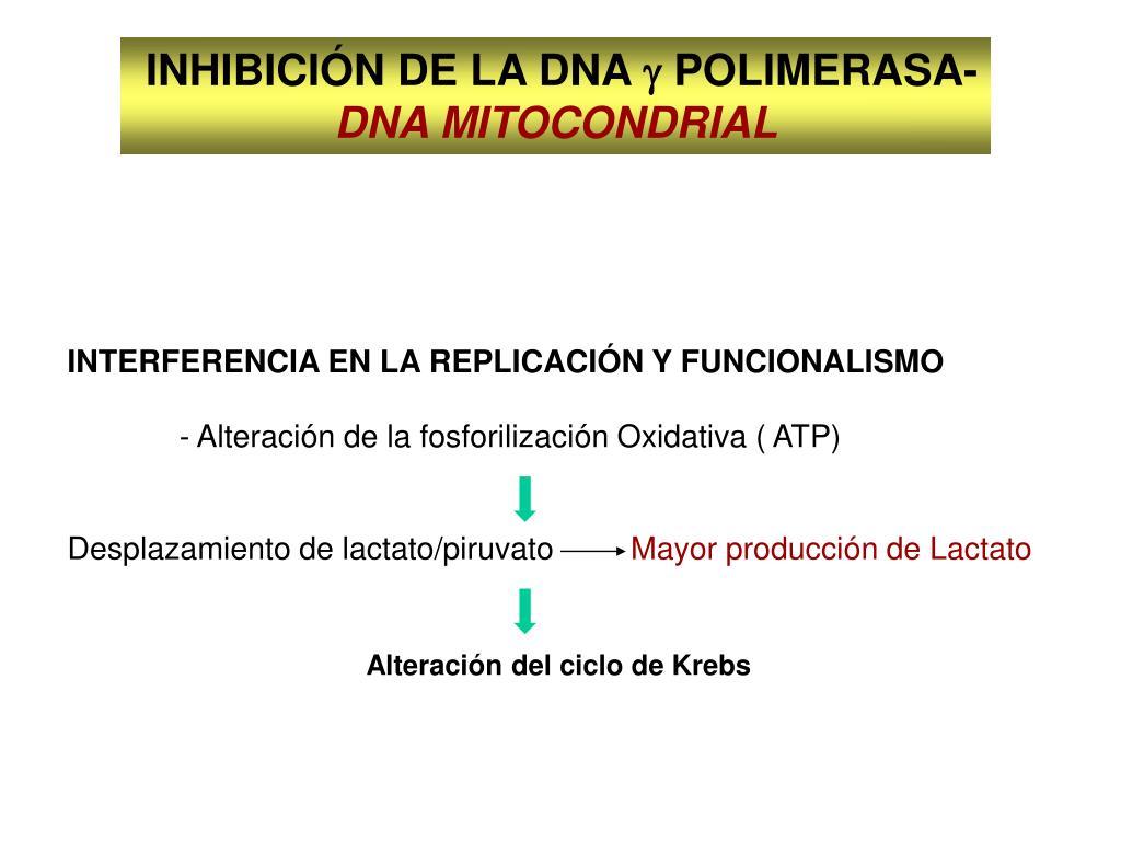 INHIBICIÓN DE LA DNA