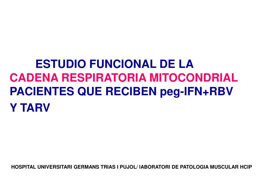 ESTUDIO FUNCIONAL DE LA