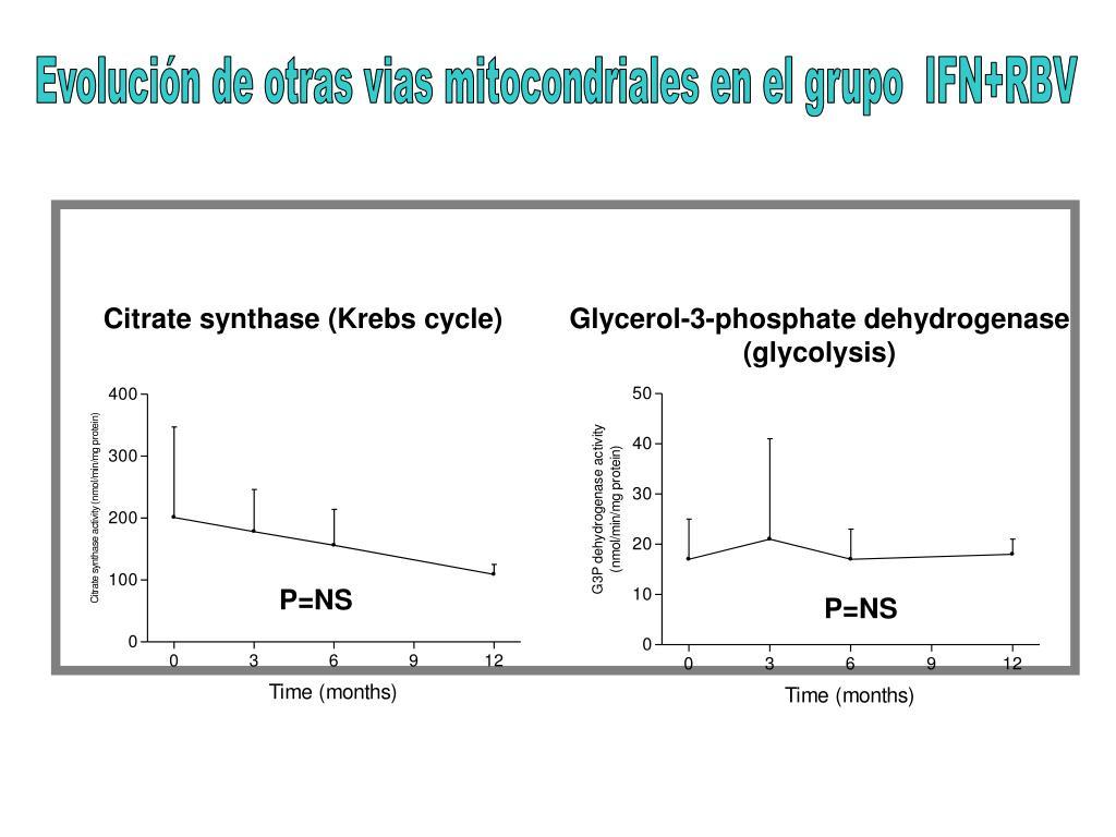 Evolución de otras vias mitocondriales en el grupo  IFN+RBV