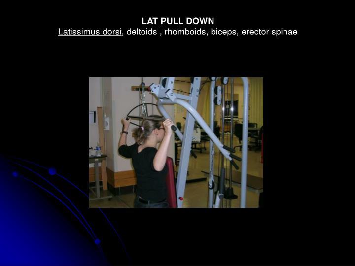 LAT PULL DOWN