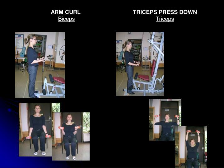 ARM CURL