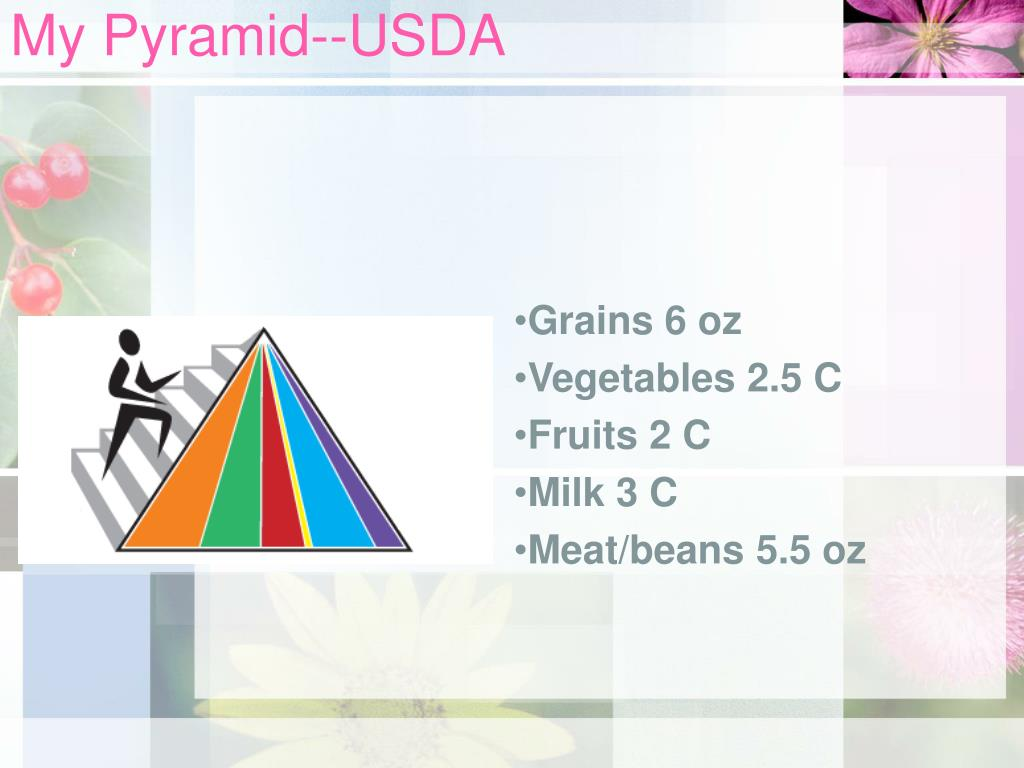My Pyramid--USDA