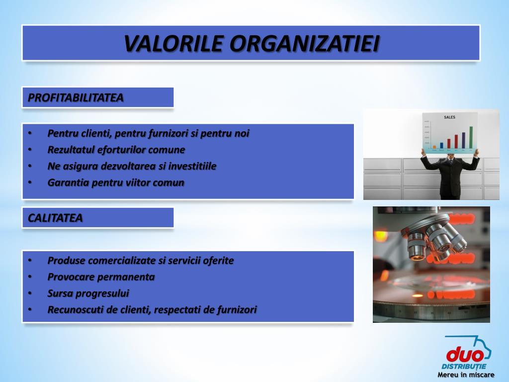 VALORILE ORGANIZATIEI