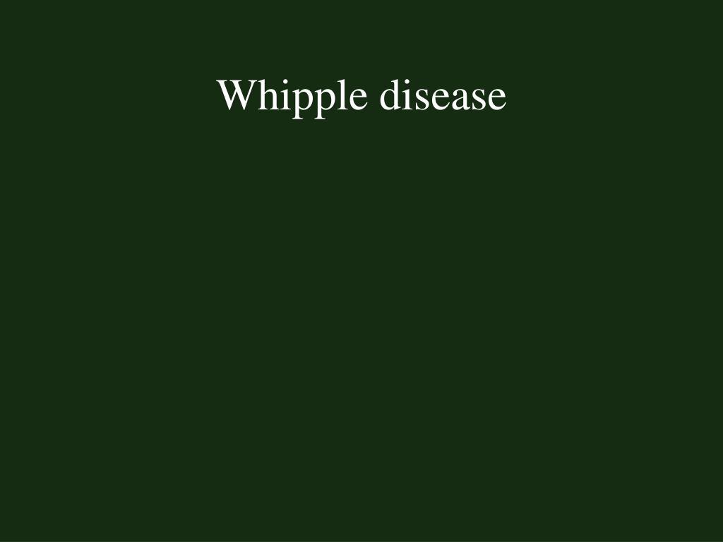 Whipple disease