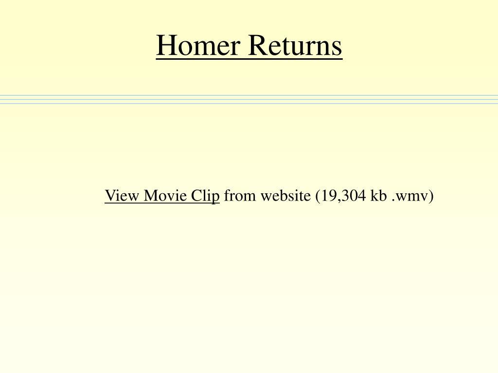 Homer Returns