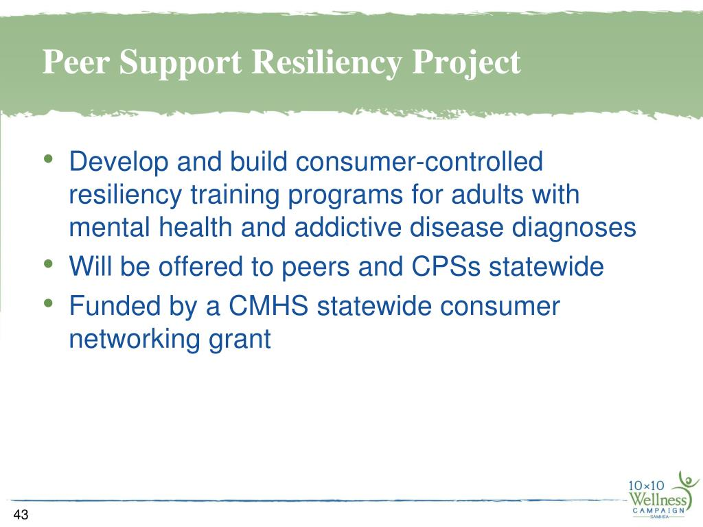 Peer Support Resiliency Project
