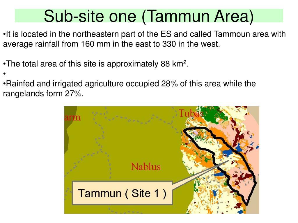 Sub-site one (Tammun Area)