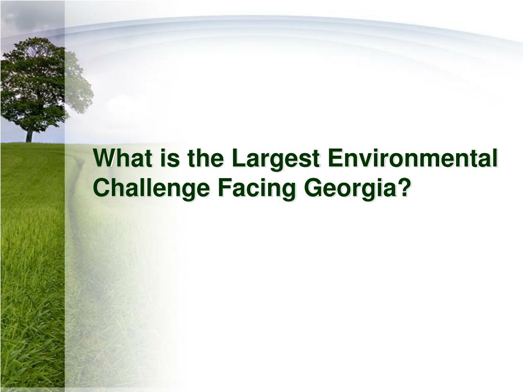 What is the Largest Environmental Challenge Facing Georgia?