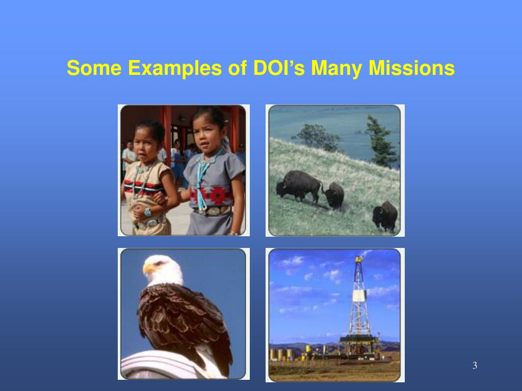 Some Examples of DOI's Many Missions