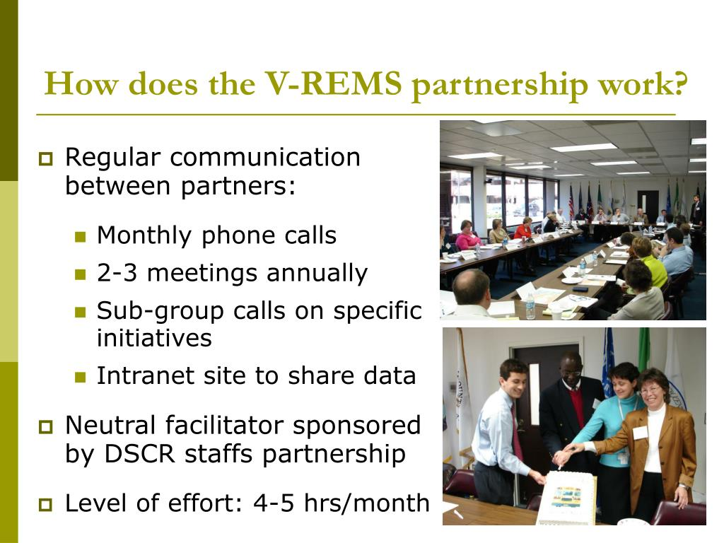 How does the V-REMS partnership work?