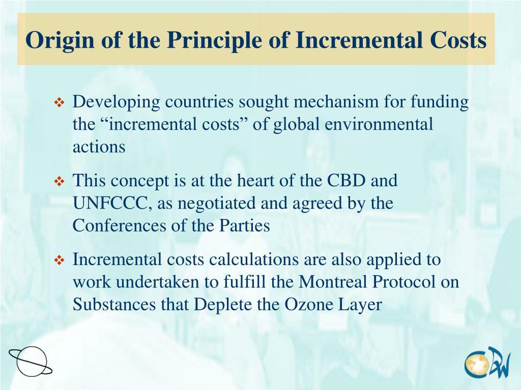 Origin of the Principle of Incremental Costs