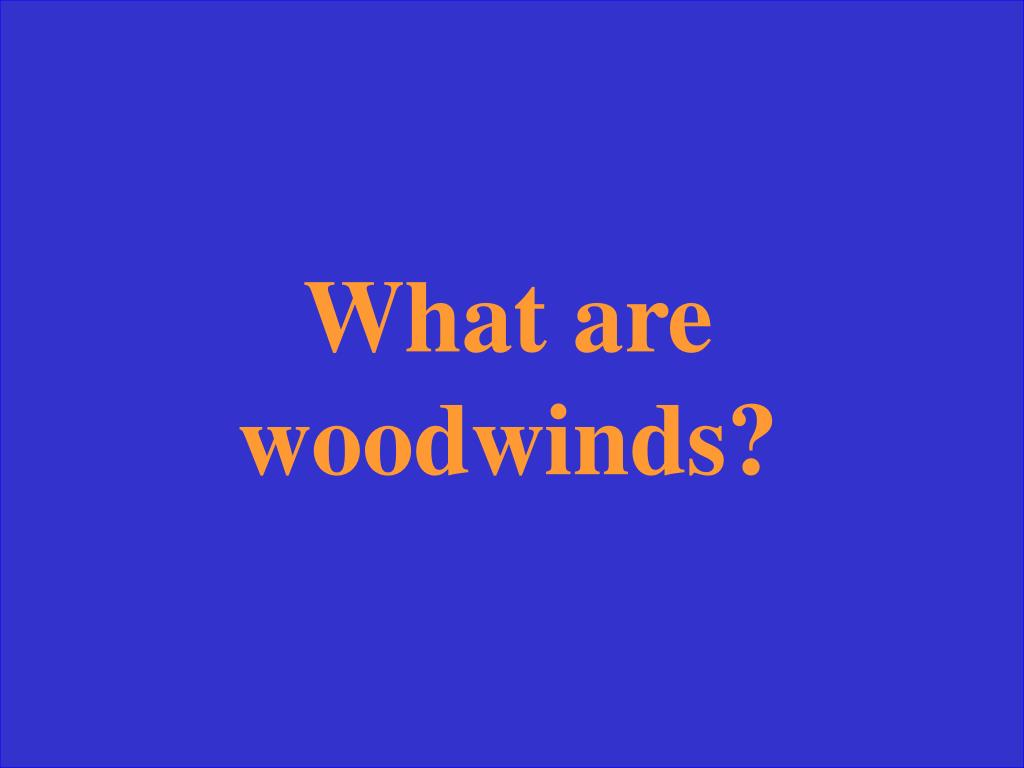 What are woodwinds?