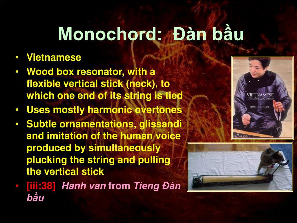 Monochord:  Đàn bầu