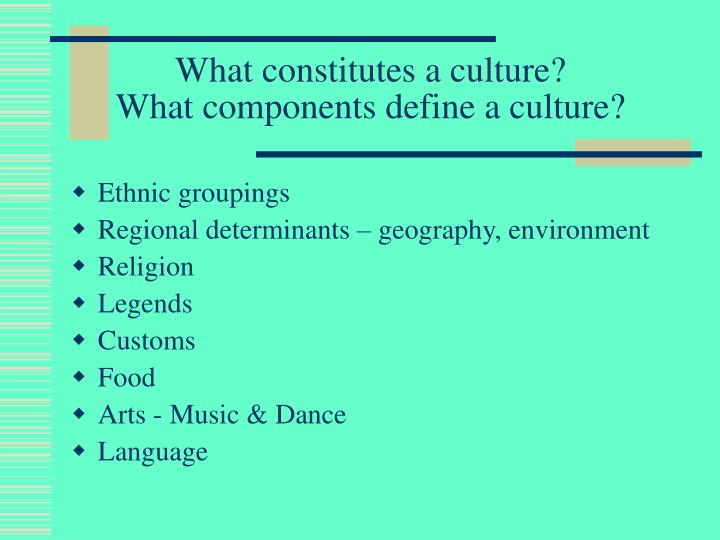 What constitutes a culture what components define a culture
