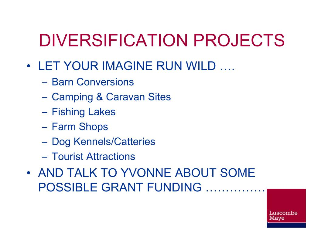 DIVERSIFICATION PROJECTS