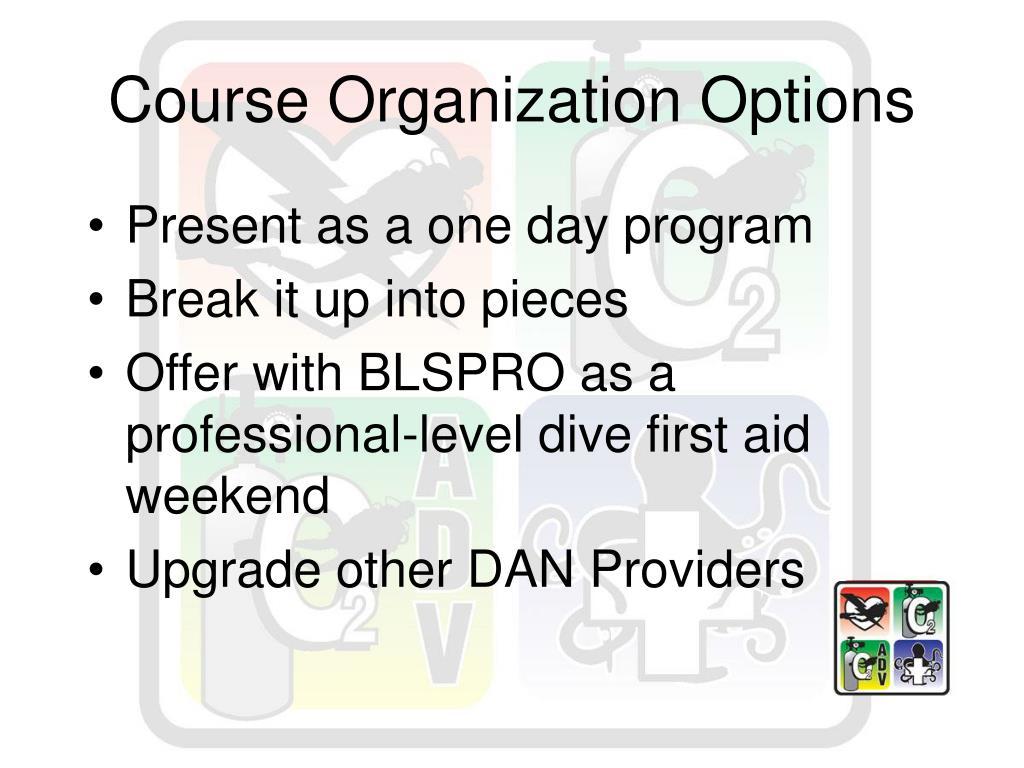 Course Organization Options