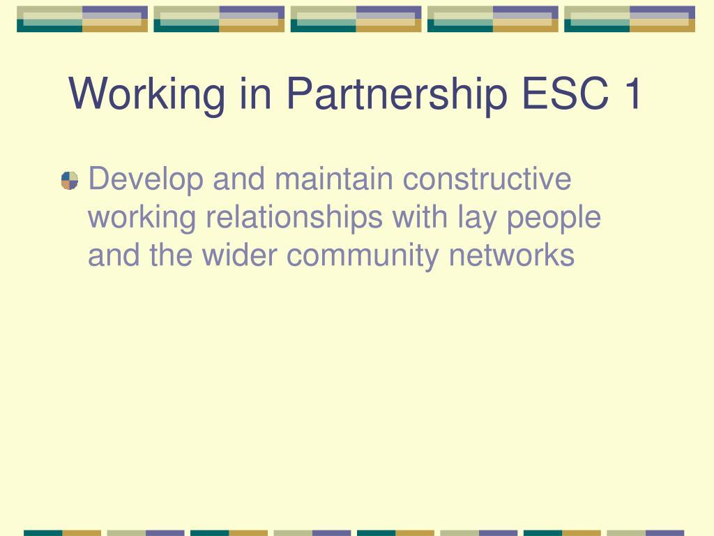 Working in Partnership ESC 1