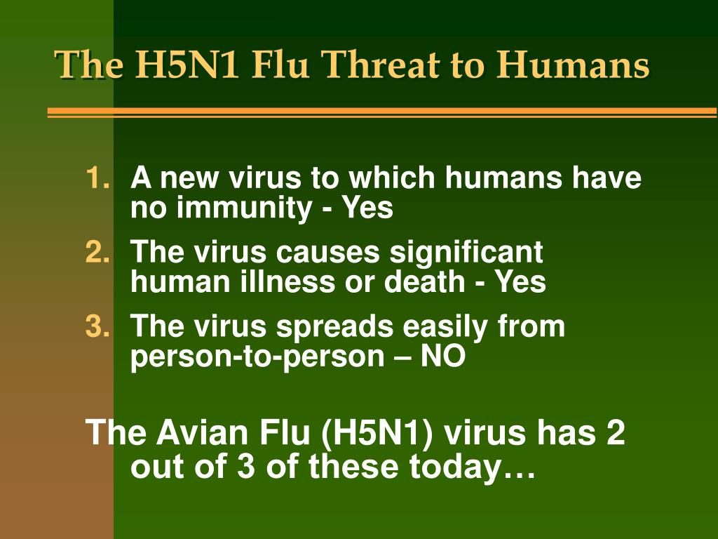 The H5N1 Flu Threat to Humans