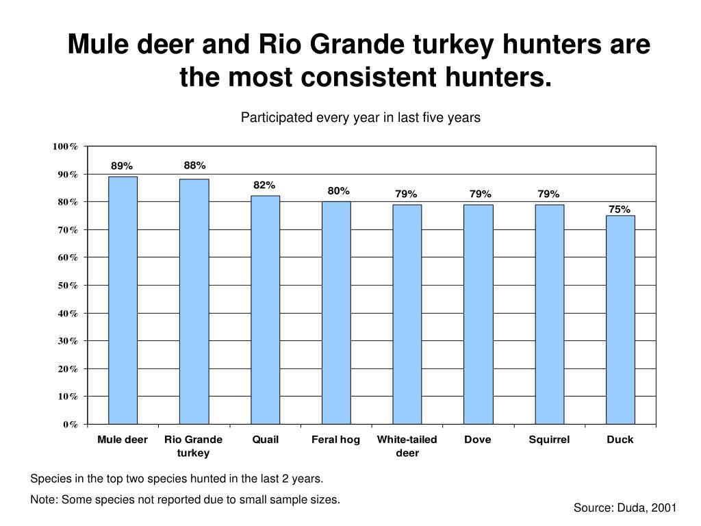 Mule deer and Rio Grande turkey hunters are the most consistent hunters.