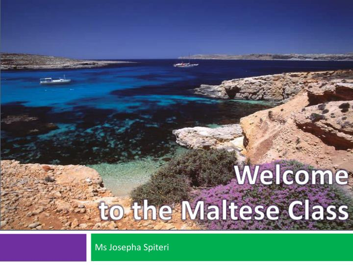 Welcome to the maltese class l.jpg