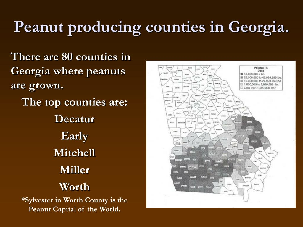Peanut producing counties in Georgia.