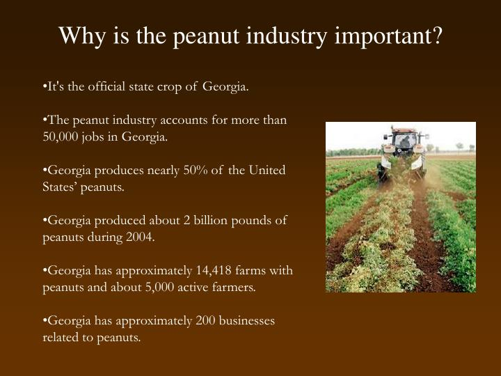 Why is the peanut industry important?