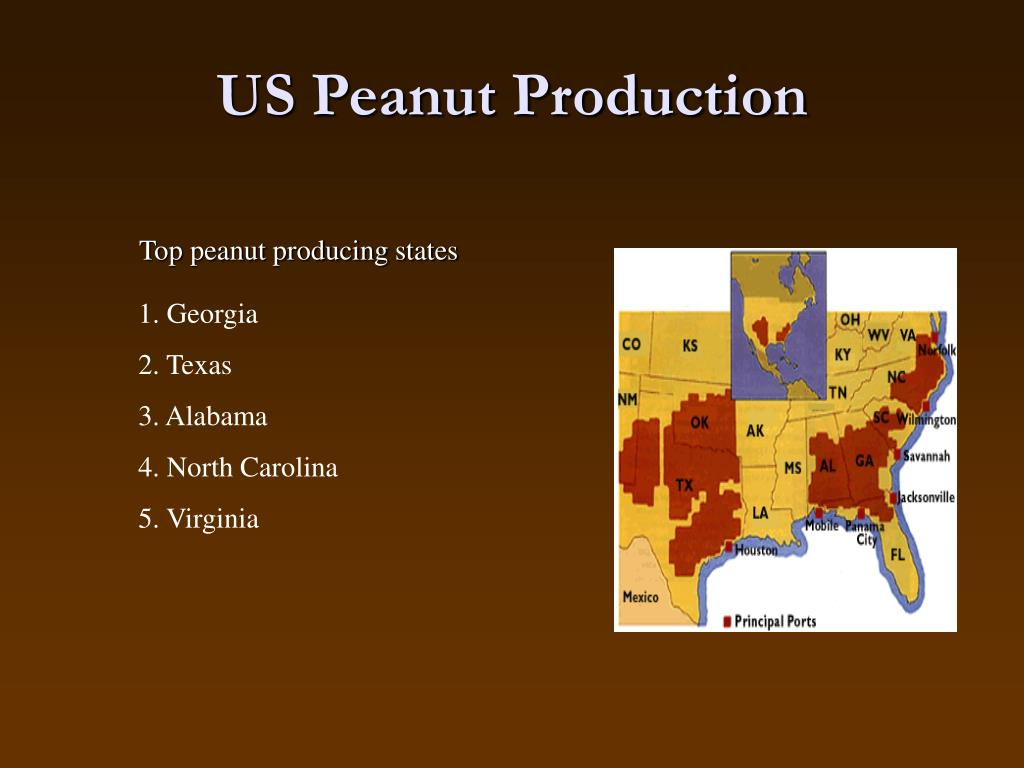 US Peanut Production