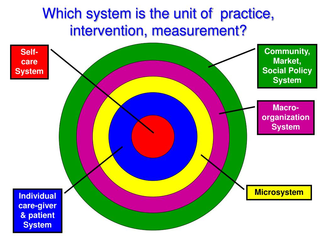Which system is the unit of  practice, intervention, measurement?