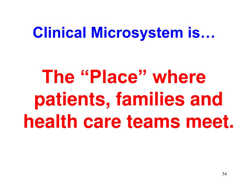 Clinical Microsystem is…