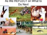 as we reflect on what to do next let us