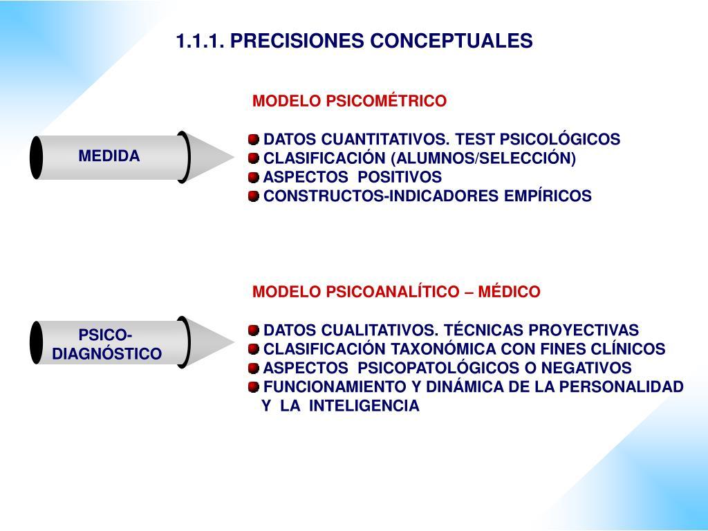 1.1.1. PRECISIONES CONCEPTUALES