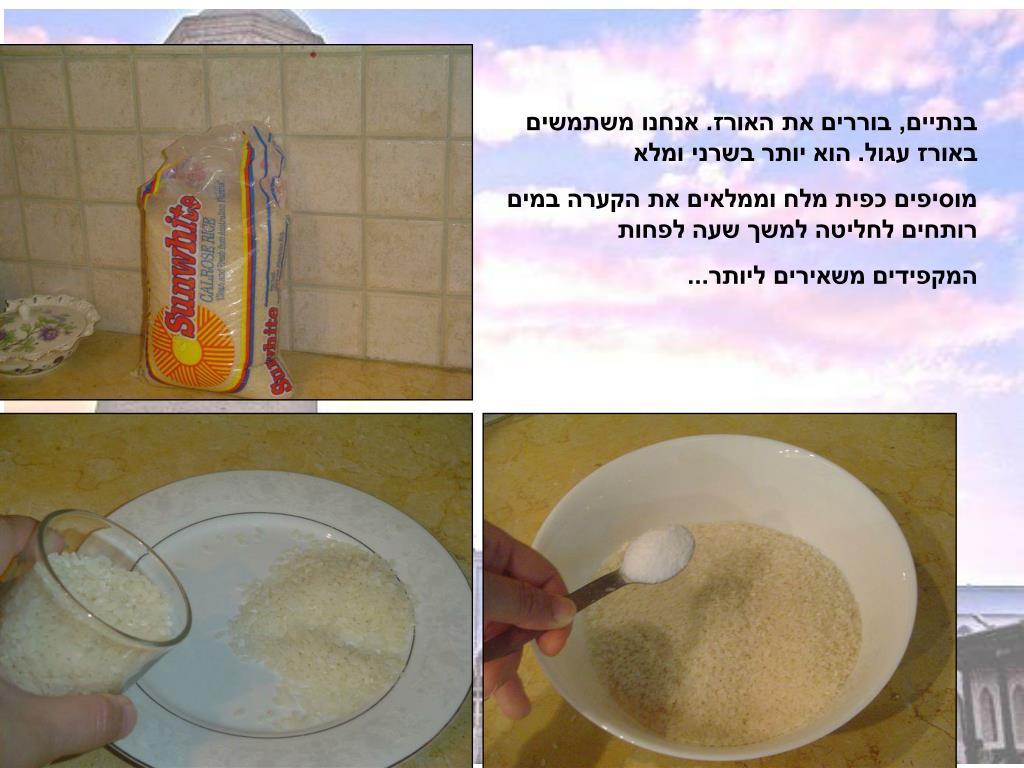 בנתיים, בוררים את האורז. אנחנו משתמשים באורז עגול. הוא יותר בשרני ומלא