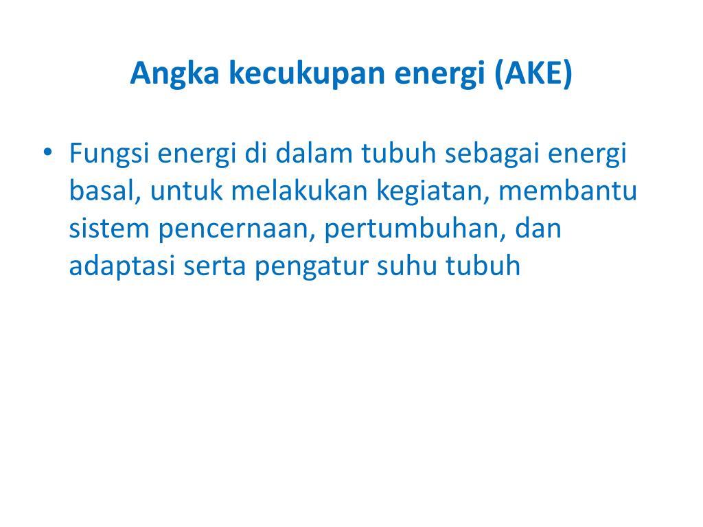 Angka kecukupan energi (AKE)
