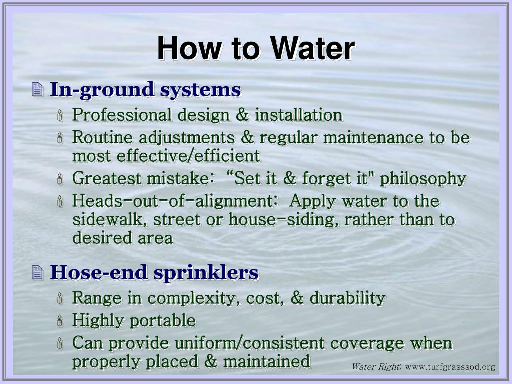 How to Water