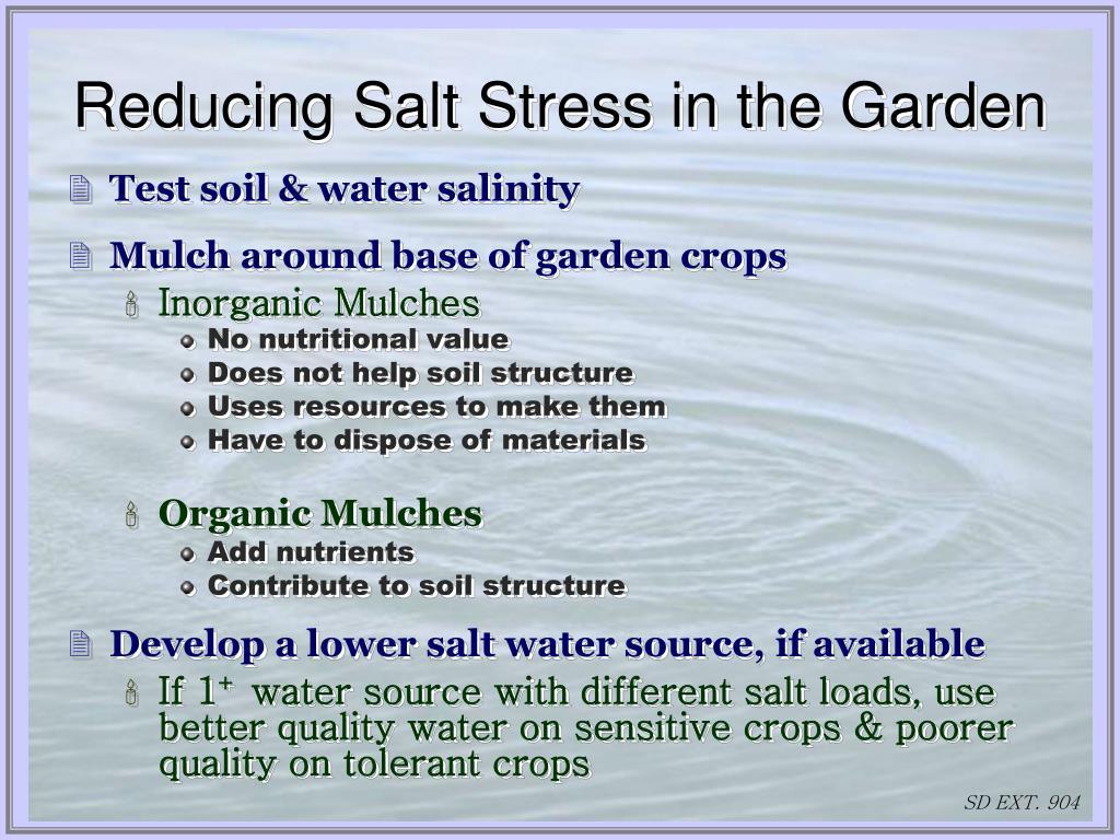 Reducing Salt Stress in the Garden