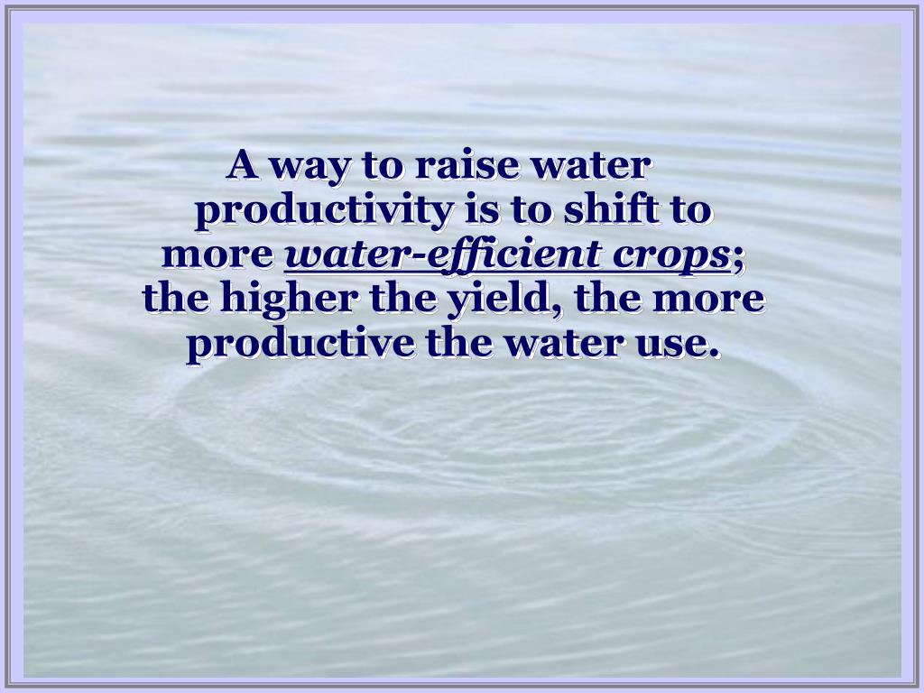 A way to raise water productivity is to shift to more