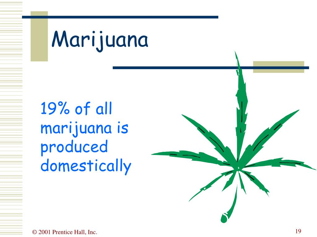 19% of all marijuana is produced domestically
