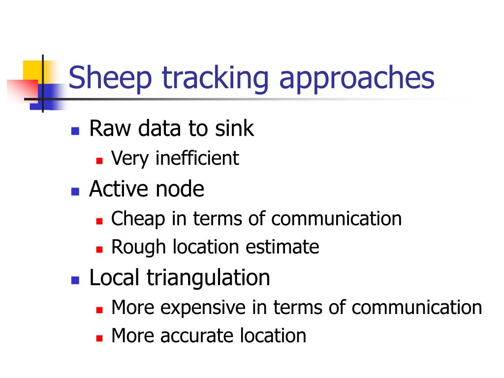 Sheep tracking approaches