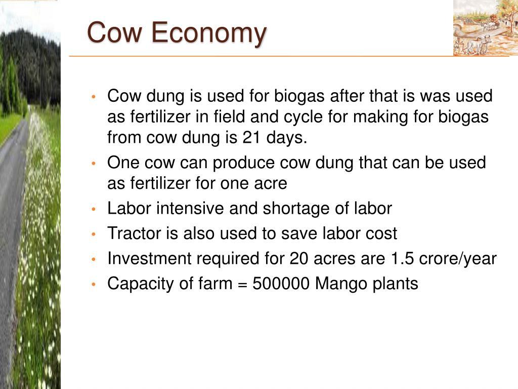 Cow Economy