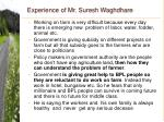 experience of mr suresh waghdhare41