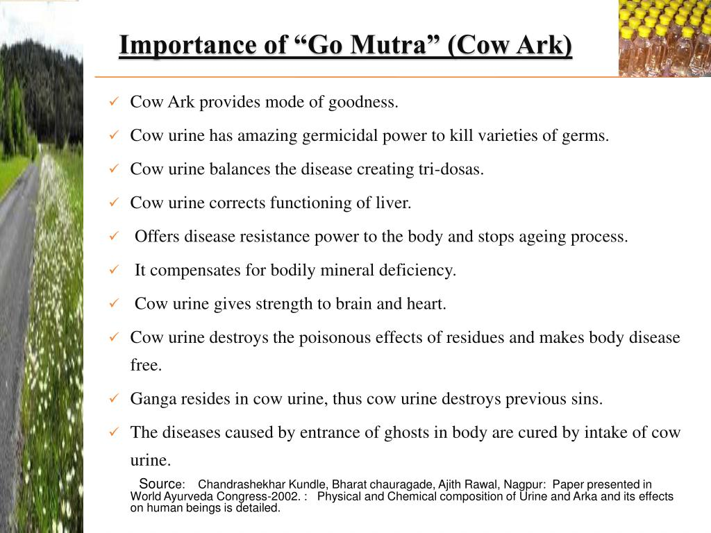"Importance of ""Go Mutra"" (Cow Ark)"