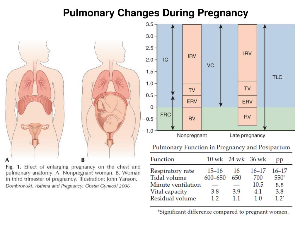 Pulmonary Changes During Pregnancy